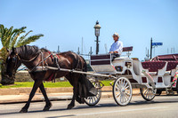 Horse Drawn Carriage, St. Augustine, FL