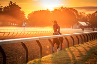 Another Sunrise at the Oklahoma Training Track, Saratoga Springs, NY