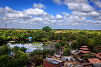 View from Expedition Everest, Disney's Animal Kingdom