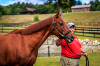 Funny Cide Meeting Some New Fans